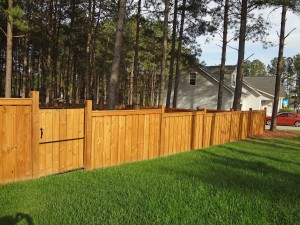 Privact Fence with custom design